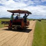 Cutting on the Harvestor