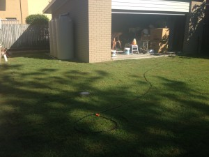 The beautiful Finished Lawn!