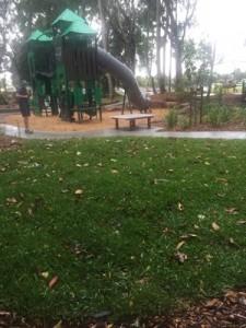 Palmetto at Knox Park Murwillumbah NSW